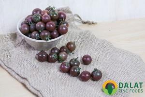 Cà Chua Cherry Chocolate (ngọt)
